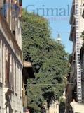 Bilocale di 90m² in Borgo Vittorio