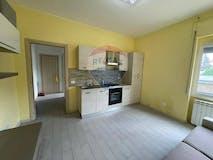 One-bedroom Apartment of 50m² in Via Ungaretti 10