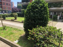 Two-bedroom Apartment of 92m² in Via Fezzan 3