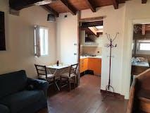 One-bedroom Apartment of 45m² in Via Santo Stefano