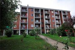 One-bedroom Apartment of 50m² in Strada Della Magra  12